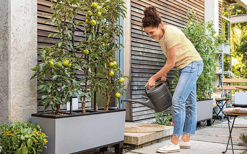 Die neue Lust am Gärtnern